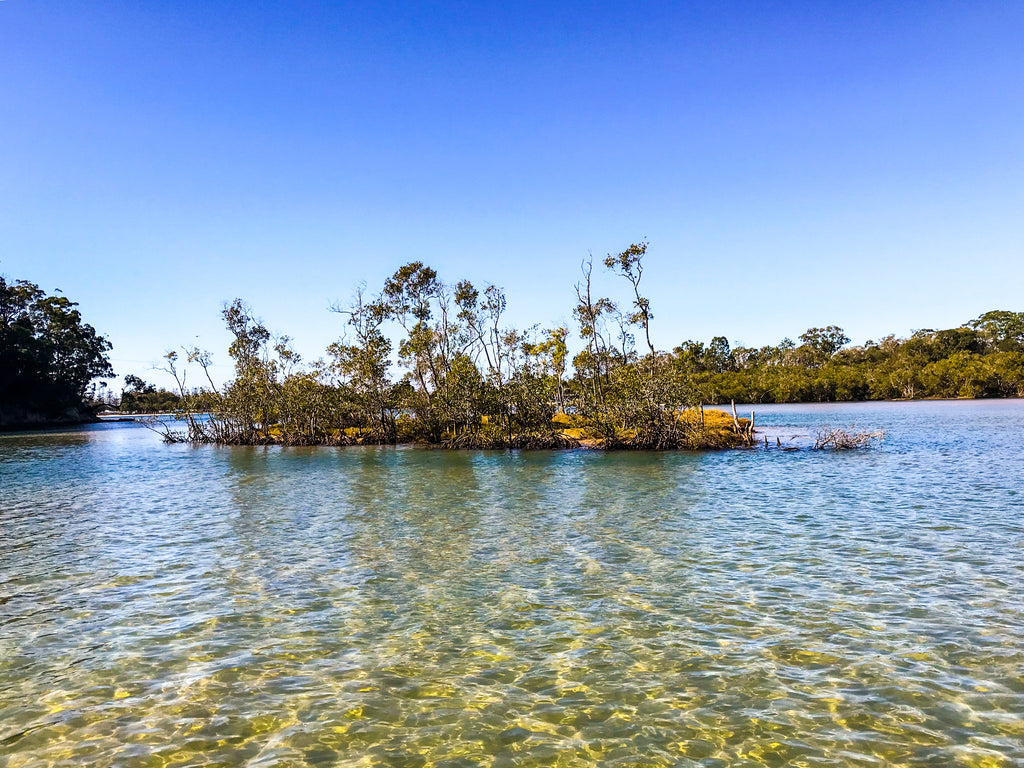 Stand up paddle boarding on Tallebudgera Creek, Gold Coast