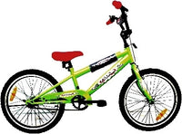 Bike Hire Gold Coast - Kids 16