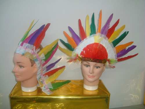 INDIAN HEADRESS FEATHER