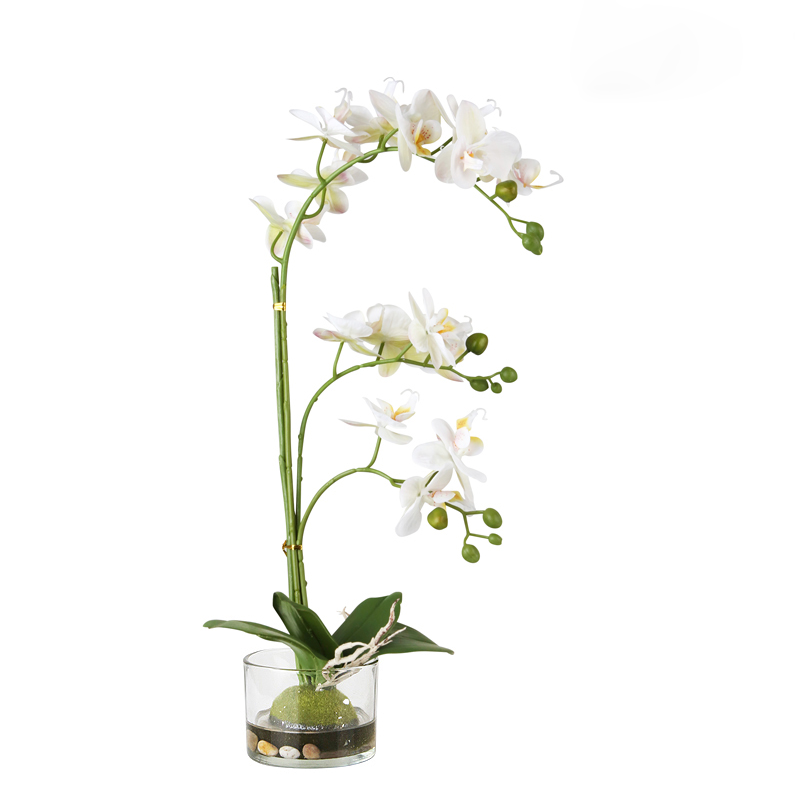 Pre-Order 40 days delivery  Real Touch  Butterfly Orchid White FL-JH245