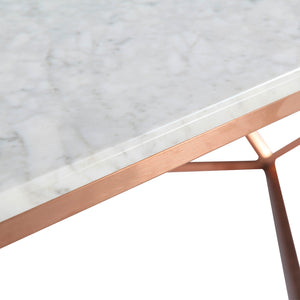 Natural Marble & Stainless Steel Table BP8809- RG