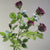 Handmade   decorative artificial plant XMXJP-XA91001-RE - ebarza