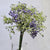 Handmade   decorative artificial plant HYP-LD3086-PU