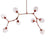 Branch 8 bubble Chandelier  CY-DD-275-8RG -  ثريا ذو 8 مصابيح على شكل فقاعات - Shop Online Furniture and Home Decor Store in Dubai, UAE at ebarza