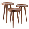 Polen set of 3 coffee tables  Zigonwood-005