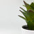 Handmade   decorative artificial plant+planter pot   P01010
