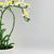Handmade   decorative artificial plant+planter pot   P00676