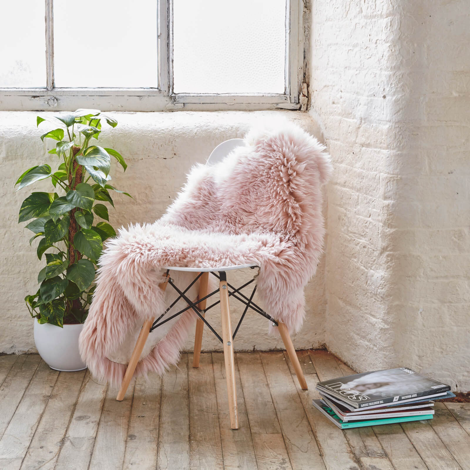 Luxurious Sheepskin Rug -Natural SHP-P