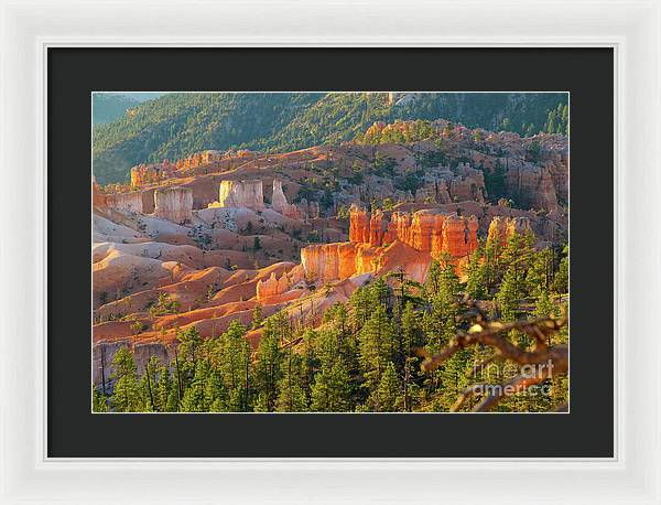 Bryce Canyon National Park - Framed Print