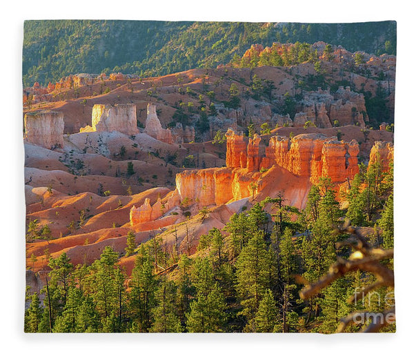 Bryce Canyon National Park - Blanket
