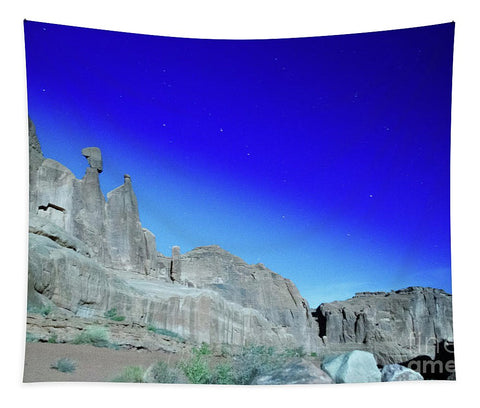 Arches National Park at night - Wall Street - Tapestry