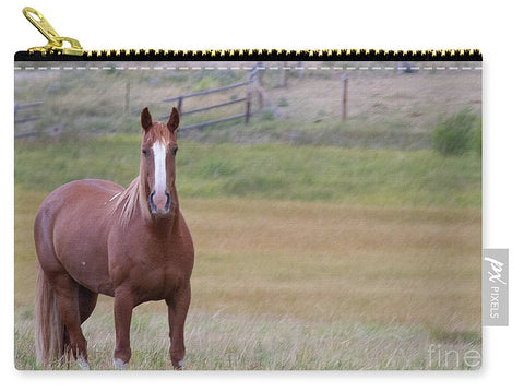 Brown Horse in Field - Carry-All Pouch