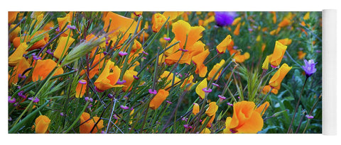 California Poppies during the 2019 Superbloom - Yoga Mat
