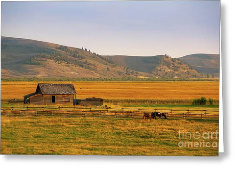 Keogh Ranch Landscape - Daniel Wyoming - Greeting Card