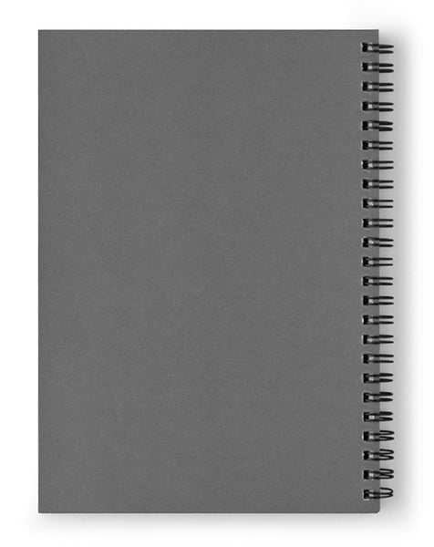 Abstract New Mexico celiling beams - Spiral Notebook