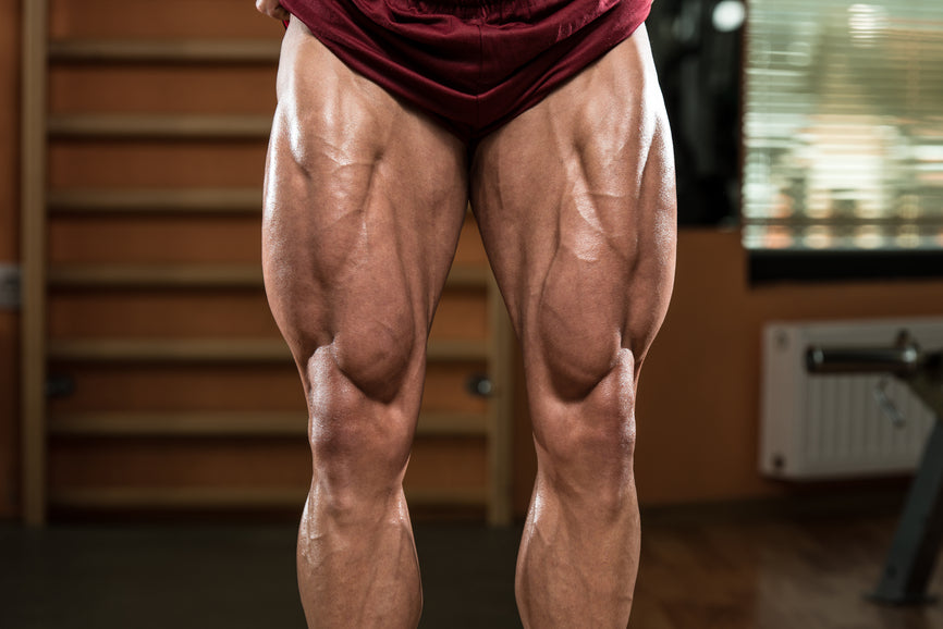 5 Leg Workouts For Mass - A Beginner's Guide!