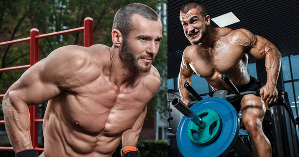 Weights vs Bodyweight exercises. Which one is better?