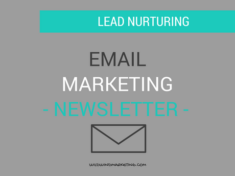 Email Marketing: 1 Newsletter al mes