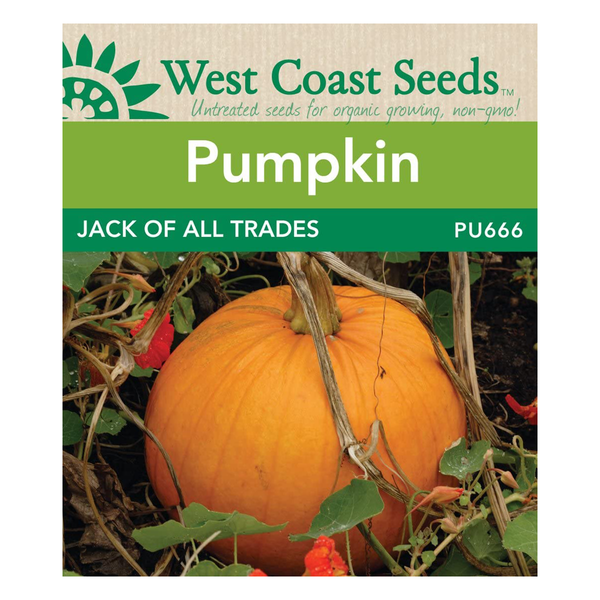 West Coast Seeds Jack Of All Trades Pumpkin Seeds - 3g