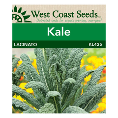 West Coast Seeds Lacinato Kale Seeds - 1g