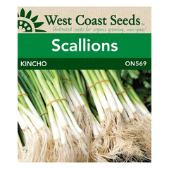 West Coast Seeds Kincho Scallion Seeds - 0.5g