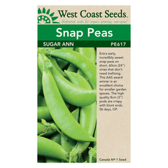 West Coast Seeds Sugar Ann Pea Seeds - 25g