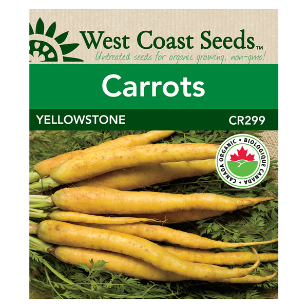 West Coast Seeds Coated Yellowstone Organic Carrot Seeds - 0.5g
