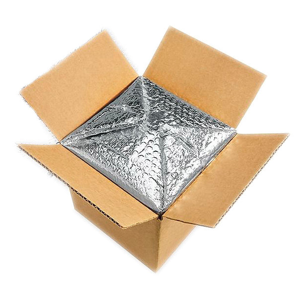 Vegan Supply Insulated Shipping Box