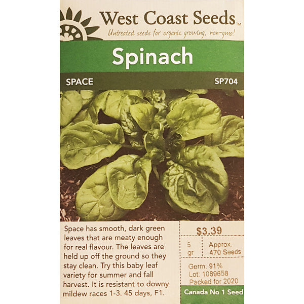 West Coast Seeds Space Spinach Seeds - 5g
