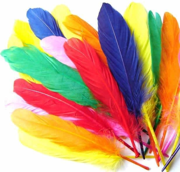 Crafty Kidz Assorted Craft Feathers 15cm 20 pieces