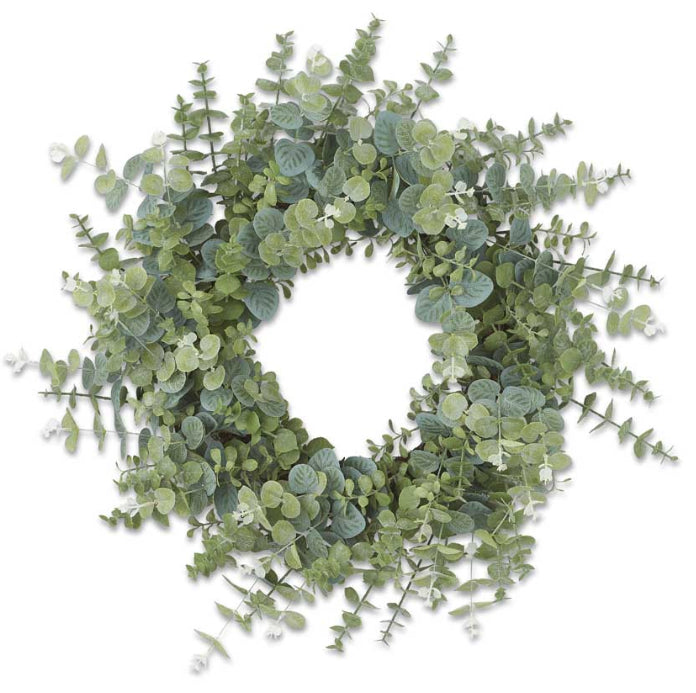 24 Inch Blue Gum Eucalyptus Wreath w/Grapevine Base