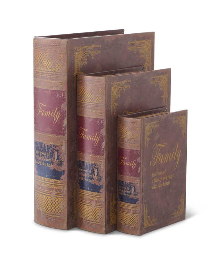 Set of 3 Antique Book Boxes (Grad Sizes)