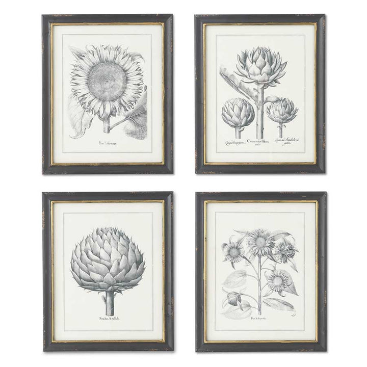 Assorted 22 Inch Sunflower and Artichoke Prints in Black Frames (4 Styles sold individually)