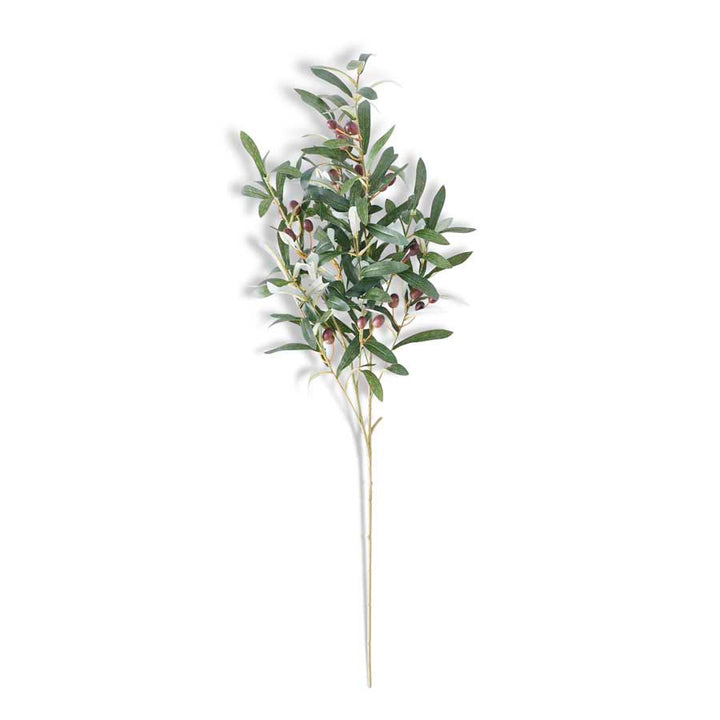 41.5 Inch Tall Olive Leaf Spray with Olives