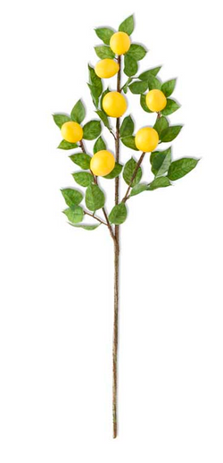 30 Inch Lemon & Foliage Spray Stem