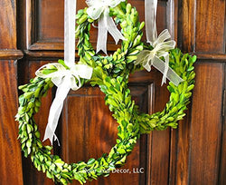 Set of Three Mini Preserved Boxwood Wreaths for Interior Home Decor with Sheer Ribbon Bows