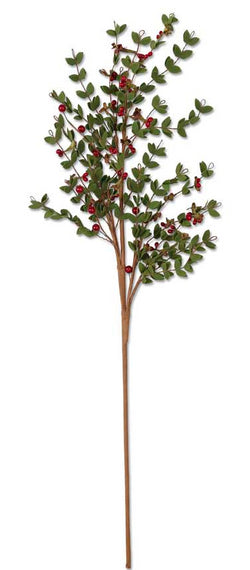 30 Inch Leafy Stem with Red Berries