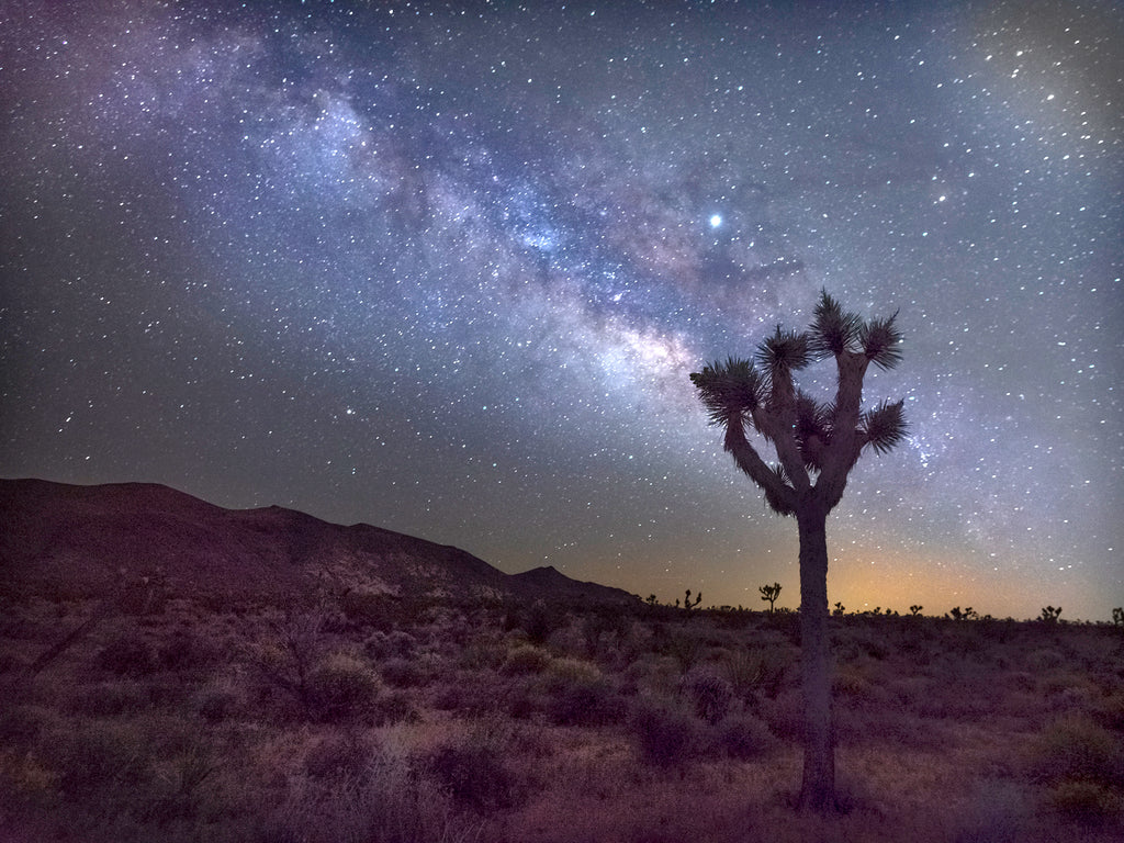 Milky Way In The High Desert