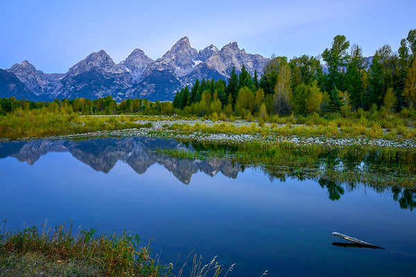 The Blue Tetons
