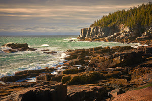 Coastline - Acadia National Park