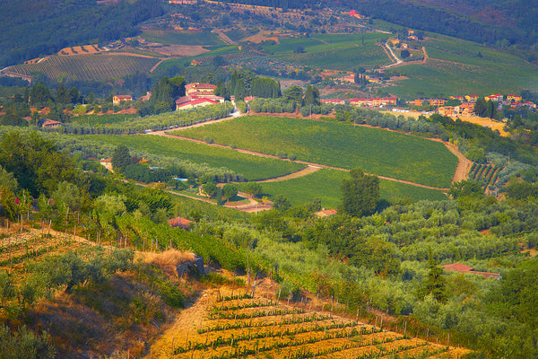The Hillsides Of Greve In Chianti