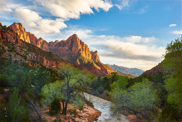 The Watchman Mountain at Zion National Park