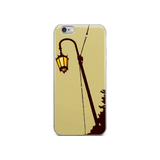 Lake Lights iPhone Cases