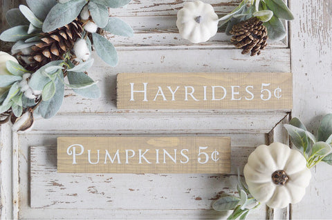 Fall Collection: Mini Pumpkins or Hayrides
