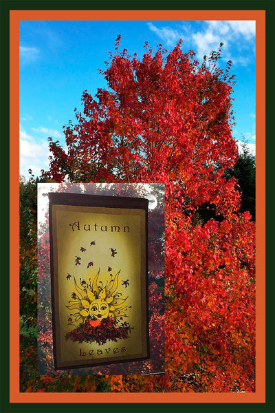 Autumn-Leaves-12x18-Garden-Window-Flag-Fly-Me-The-Sunny-Breezes-Decorative-Flags-Collection-from-T-Cards-by-Bad-Ballerinas-Thanksgiving-Window-Borders