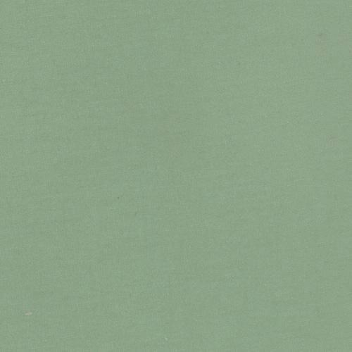 Solid Deep Sage Green 4 Way Stretch 10 oz Cotton Lycra Jersey Knit Fabric - Raspberry Creek Fabrics