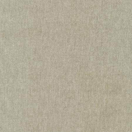 Sage Green Tweed Look Tahoe Flannel by Robert Kaufman, 1 yard