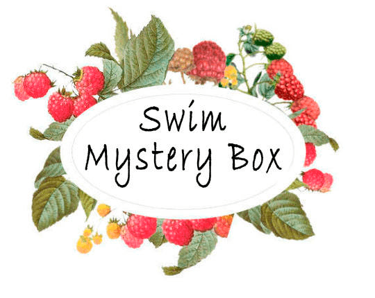 Swim and Boardshort Mystery Box - Raspberry Creek Fabrics