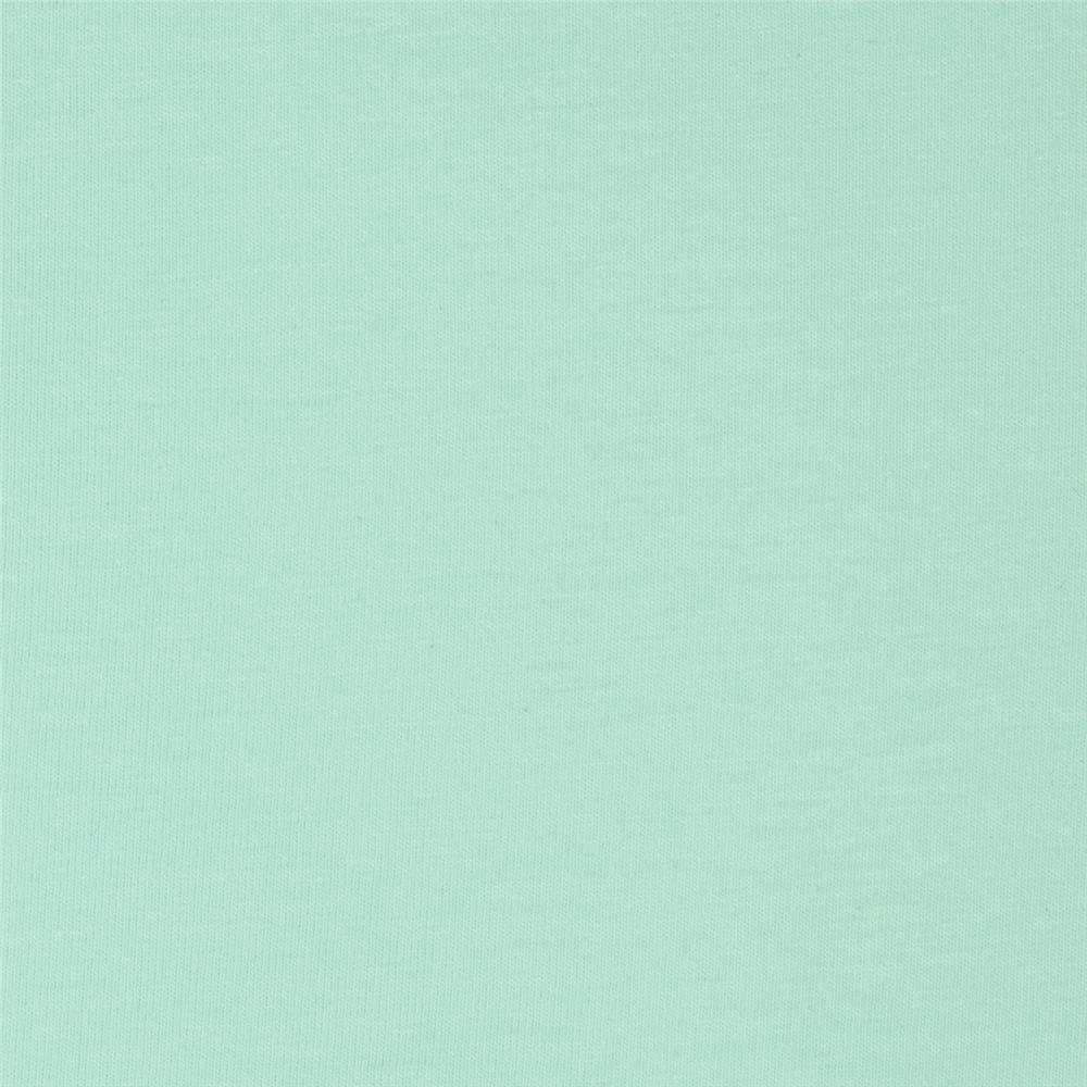 Solid Mint Green 4 Way Stretch 9oz Cotton Lycra Jersey Knit Fabric, 1 Yard