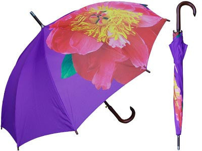 Purple Umbrella With Flower Print